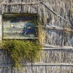 Cabane pêcheur